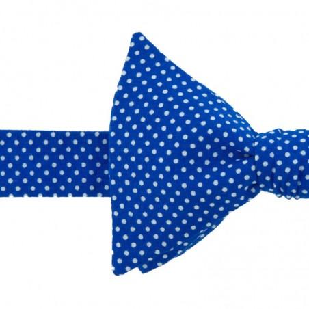Noeud Papillon Mini Pois Bleu dur
