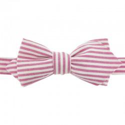 Fushia stripe bow tie