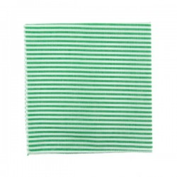 Pochette de costume à rayures vert gazon