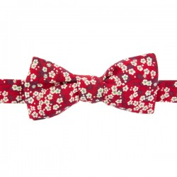 Red Mitsi Valeria Liberty Bow Tie