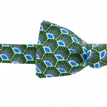 Noeud papillon Slim Gatsby vert et bleu
